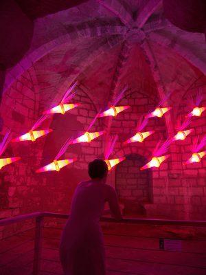 Le cri du moustique - Installation lumineuse et sonore 2011